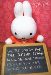 365 Toy Project: Intermission (esmereldes) Tags: rabbit bunny toy fuzzy plush stuffedanimal stuffedanimals plushie miffy intermission chalkboard blackboard img2783 365toyproject
