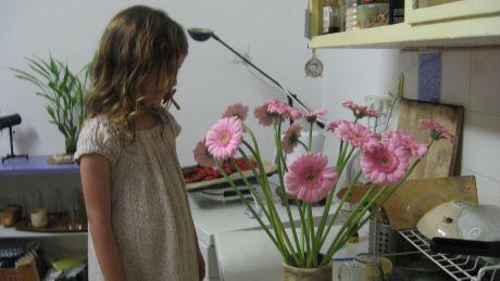 פרחים במטבח של חנה פרדס
