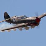 Steve's ESM P40 Warhawk, #T8A7038 thumbnail