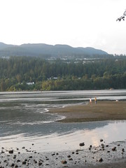(O Aguiar) Tags: sunset water rockypoint portmoody
