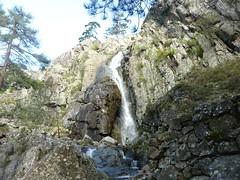 Sentier du Tavignanu RG en amont de Sega : cascade de Sarravona
