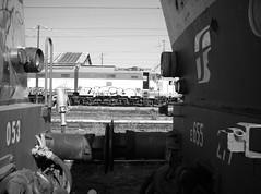 Panconi (train_spotting) Tags: rail away cargo e vista dettagli om breda livorno treno tigre dl ercole abb trenitalia elettrica 655 ansaldo locomotiva 656 laterale fossa 652 caimano rimessa marelli e646 xmpr panconi tigrone tirrenica respingenti tecnomasio centralee dispezione