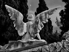 [フリー画像] [人工風景] [彫刻/彫像] [天使/エンジェル] [月の風景] [モノクロ写真]      [フリー素材]