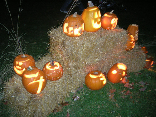 The group where my pumpkin resided.