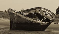 Varado B/N (pericoterrades) Tags: parque naturaleza huelva ro marismas parquenatural pericoterrades marismasdelodiel artlibre rioodiel