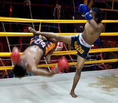 Muay Thai, Thailand (C) 2007