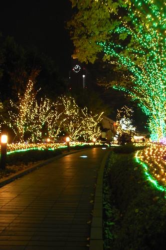 Southern lights street