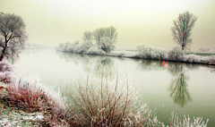 Life is a long quiet river (aremac) Tags: winter tree river germany deutschland bravo neckar magicdonkey edingen anawesomeshot diamondclassphotographer bofwinner bestofr