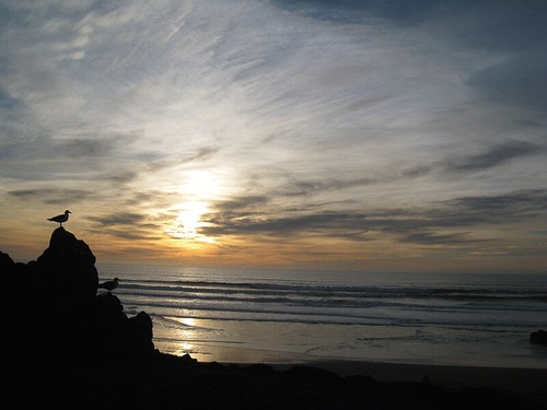 Sunset at Bodega Bay