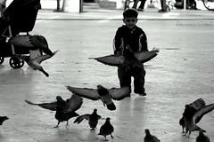 hihihi :)(: (asunsal) Tags: blackandwhite bw bird nature kids canon turkey interestingness amazing interesting quality trkiye dreams mystical 123bw fotorafkraathanesi asunsal fotografca