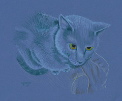 Blue Katie Cat by Sydney Harper
