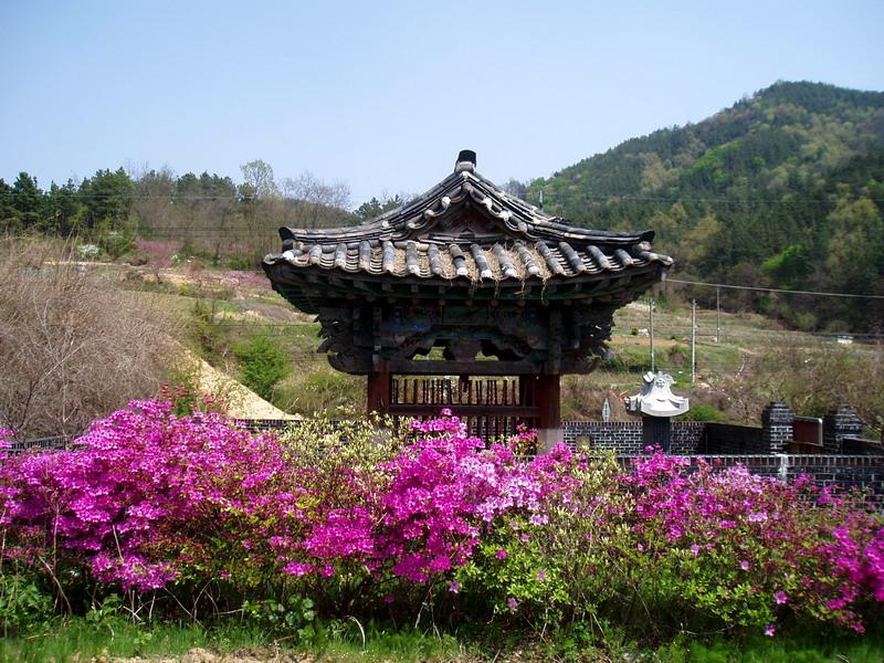 Shrine (1)