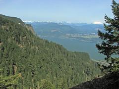 FromWyeth01 (pauljess999) Tags: hiking wyeth columbiarivergorge lindseycreek