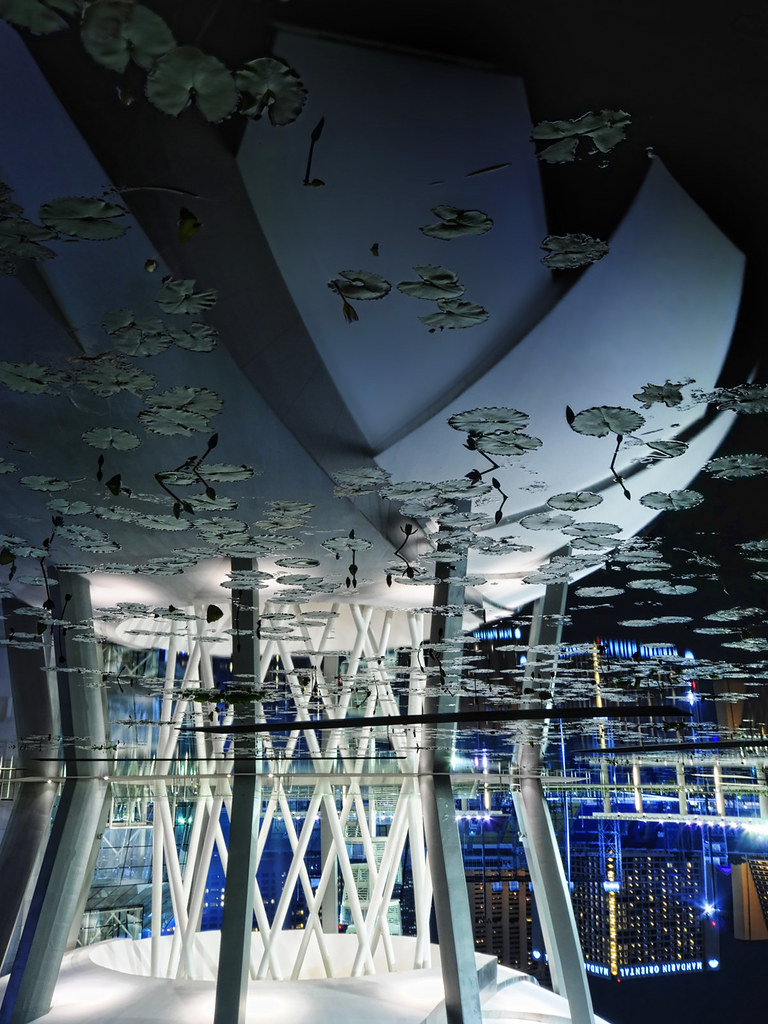 Sometimes an image can deliver more impact upside down... The Singapore ArtScience Museum – an update