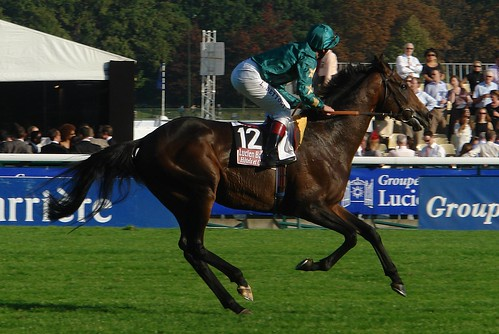 Authorized coming back, having not won the Arc
