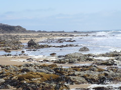 Rotherslade Bay (simonswansea66) Tags: beach swansea wales bay rocks stock pebbles gower mumbles rotherslade blueribbonwinner superbmasterpiece lunarvillage amazingamateur goldstaraward scenicsnotjustlandscapes