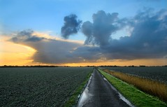 Horizon (Pieter Musterd) Tags: road winter landscape bravo horizon thenetherlands groningen vanishing countryroad weg landschap smrgsbord hornhuizen ochtendzon 10faves demarne pieter007 canoneos400d anawesomeshot aplusphoto excellentphotographerawards brillianteyejewel pietermusterd