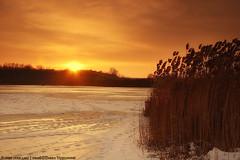 Sunset over lake (darkves) Tags: sunset sun lake snow landscape wind blow sneg banat jezero ravnica deliblato pejza koava darkoveselinovic