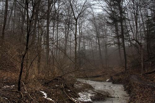 HDR Foggy riverside