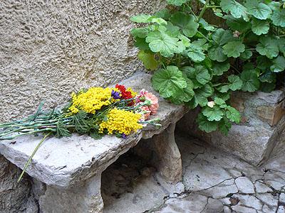 fleurs sur un banc.jpg