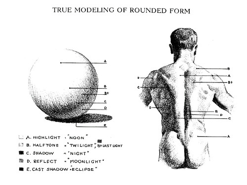 MUHSASHUM: Recommended Viewing | Andrew Loomis\' Anatomy Books...