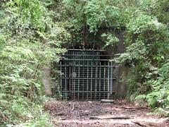 多摩湖手前の閉鎖トンネル