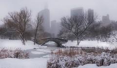 Central Park (karinavera) Tags: travel sonya7r2 newyork bridge storm centralpark snow 020917