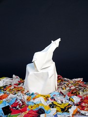 adrift (-sebl-) Tags: polar bear pollution paper newspaper canson white black sebl origami