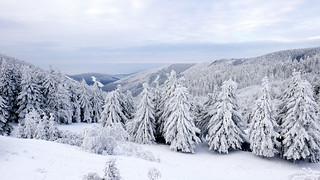 Winter in mountains 1