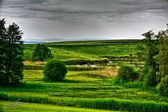 Schlossweiher (DaLMaTiNo) Tags: lake switzerland pond che bara schloss stgallen gallen ch sankt sanktgallen weiher 2011 goldach tonemapping sulzberg dalmatino schlossweiher mttelischloss