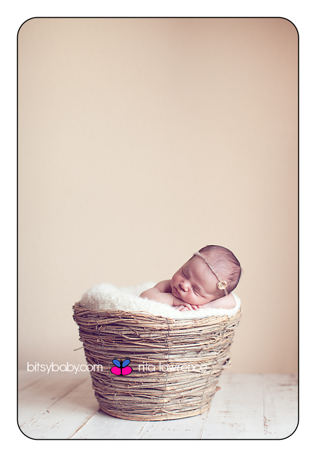 newborn photographer in DC