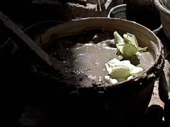 Un regalo bonito (juliana.vel.non) Tags: flores rosas barro arcilla crmica