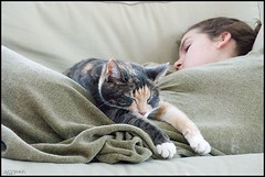 lazy sunday afternoon (MiChaH) Tags: sleeping pet cat kat amy daughter lazy athome lui thuis huisdier poes dochter slapen bestofcats