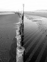 standing firm (khanrizzi) Tags: sea beach nature shadows westsussex solent coastline ripples lowtide ww westwittering