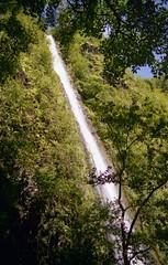 Davis Falls (Treefarmer) Tags: usa hawaii hiking adventure backpacking kauai kalalauvalley flickrestrellas davisfalls