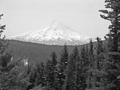 HoodBW (pauljess999) Tags: hiking wyeth columbiarivergorge lindseycreek