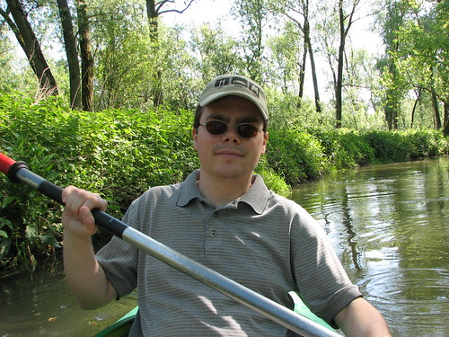 Canoeing in the Biesbosch