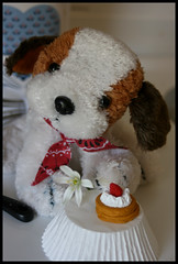 Made with Love (Cate Partridge Photography) Tags: cute toy stuffed pup puppylove pupedogg bahbahra forbahbahra