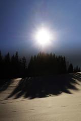 Shadow (woodngrass) Tags: sonne schnee winter schatten gegenlicht lowsun snow sun shadow backlight outdoor wintertime sunny