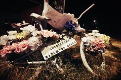 126:365 why i hate cars. (bqdockey) Tags: flowers bicycle nc nikon memorial charlotte roadsidememorial tokina bicycleaccident d90 ihatecars 1116mm highwaytragedy carsarebullshit