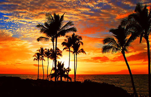 Tropical Sunset by janruss