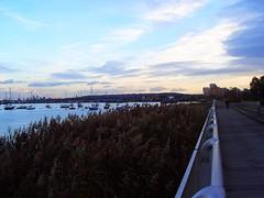 Greenwich Peninsula 4573