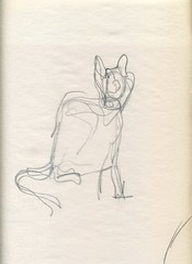 cat gesture drawing