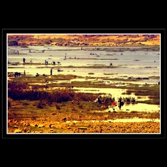 Water is Life - Life on the Senegal River (Osvaldo_Zoom) Tags: life africa people water river landscape paisaje senegal mali paysage activities fleuve kayes defidefiouiner