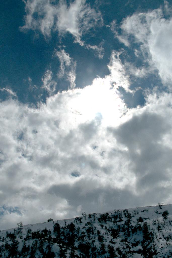 grapevine sky