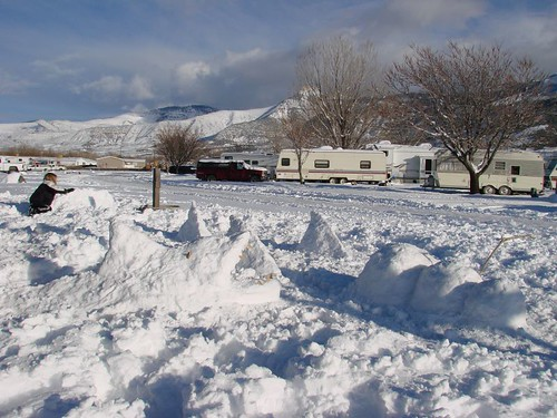 Deadly RV Park Snow Sharks