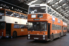 GMT 8031 ANA31T (Zippy's Revenge) Tags: bus transport depot standard northern leyland fleetline counties atherton gmt greatermanchester 8031 ncme ana31t