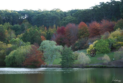 Mt Lofty Botanic Gardens