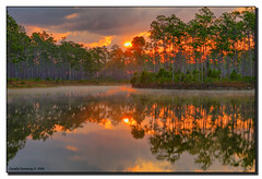 Fire in the Glades (Fraggle Red) Tags: red orange mist lake sunrise fire dawn nationalpark florida smoke illusion evergladesnationalpark campground jpeg pinetrees hdr enp canonefs1785mmf456isusm 3exp longpinekey mywinners abigfave miamidadeco betterthangood dphdr natureselegantshots