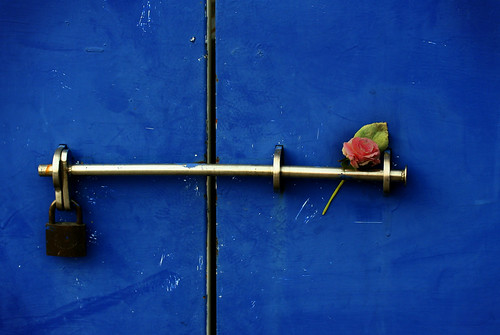 lock'n rose